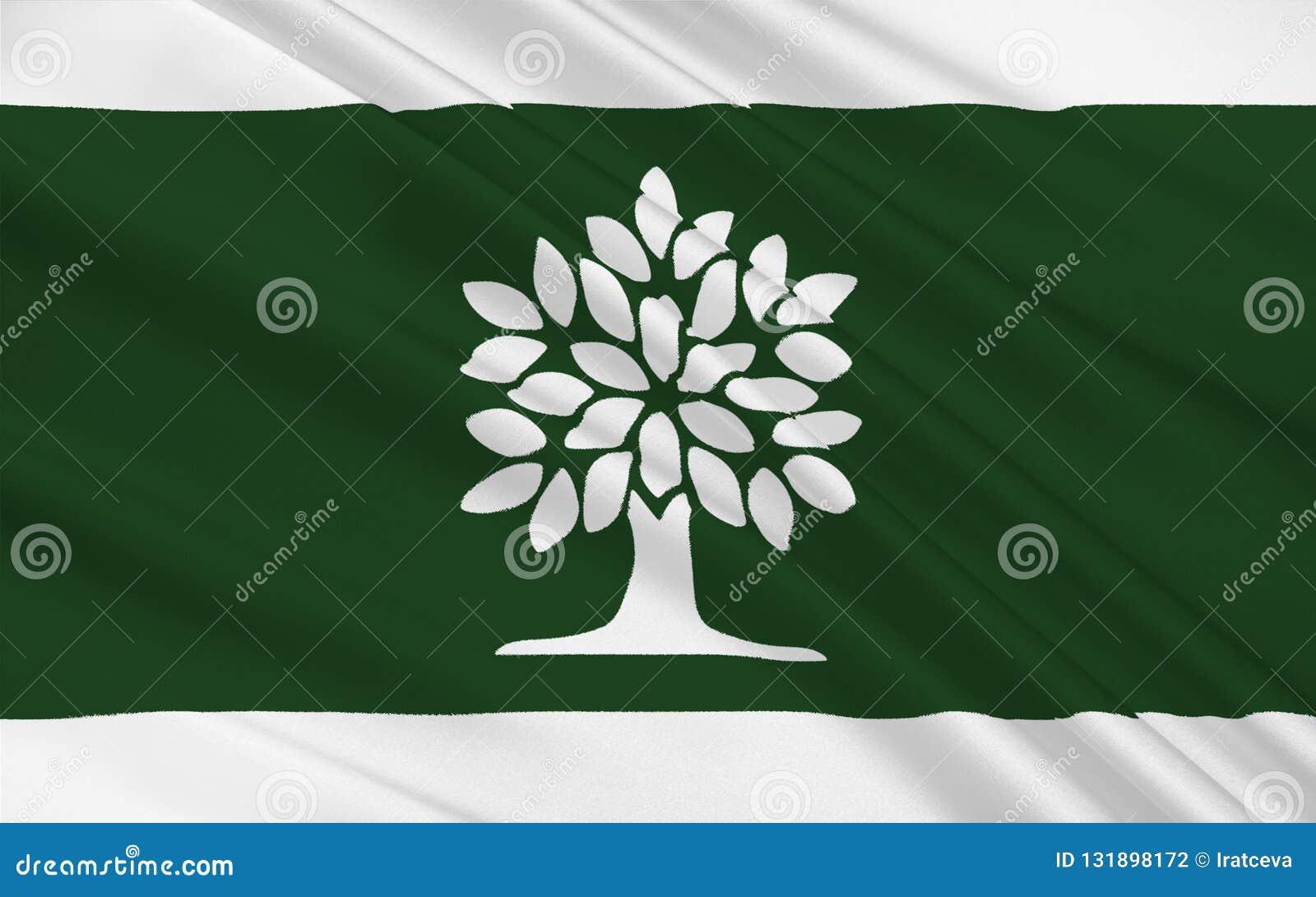 Bandiera di Londra Ontario, Canada