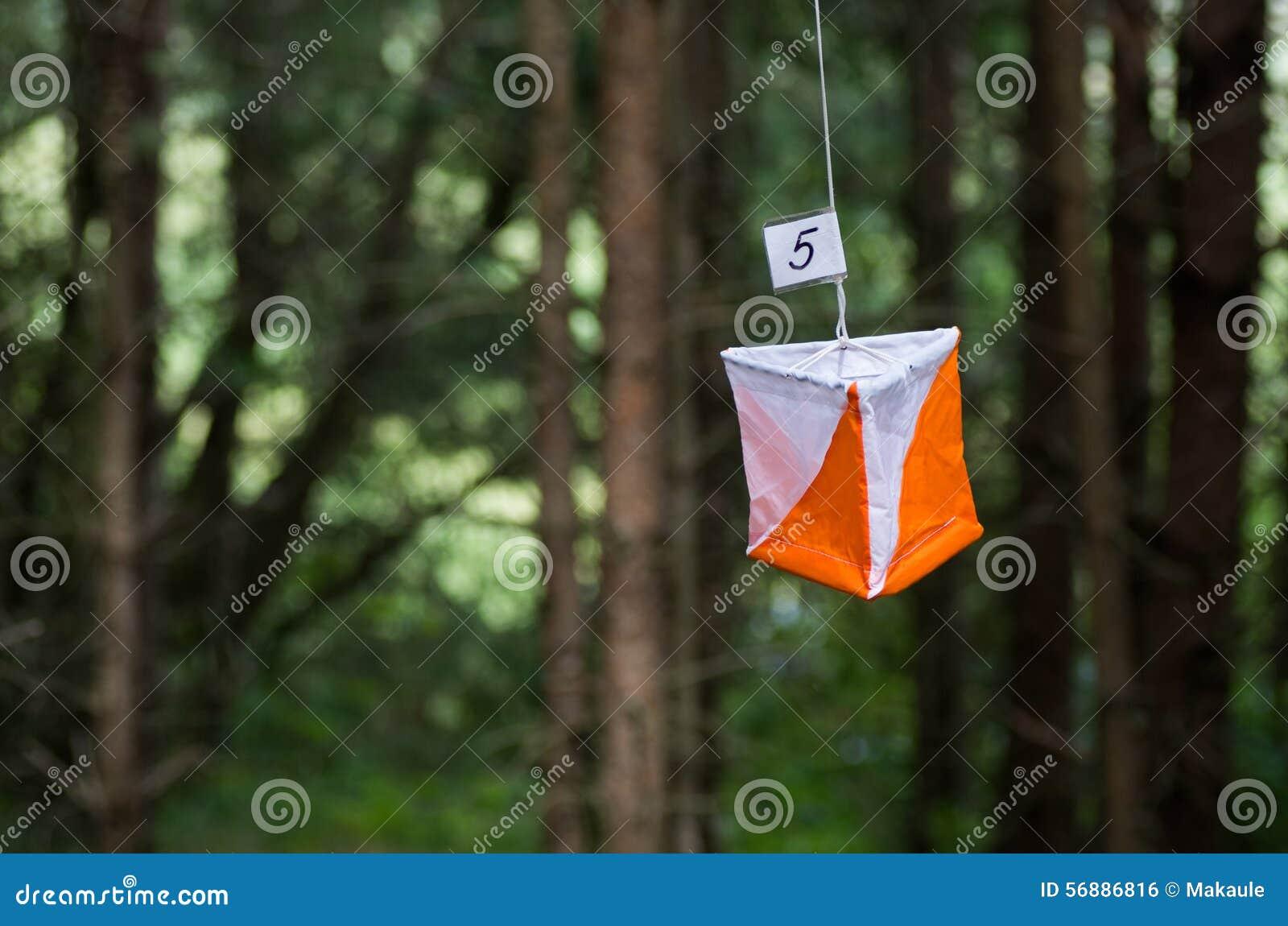 Bandiera di orienteering