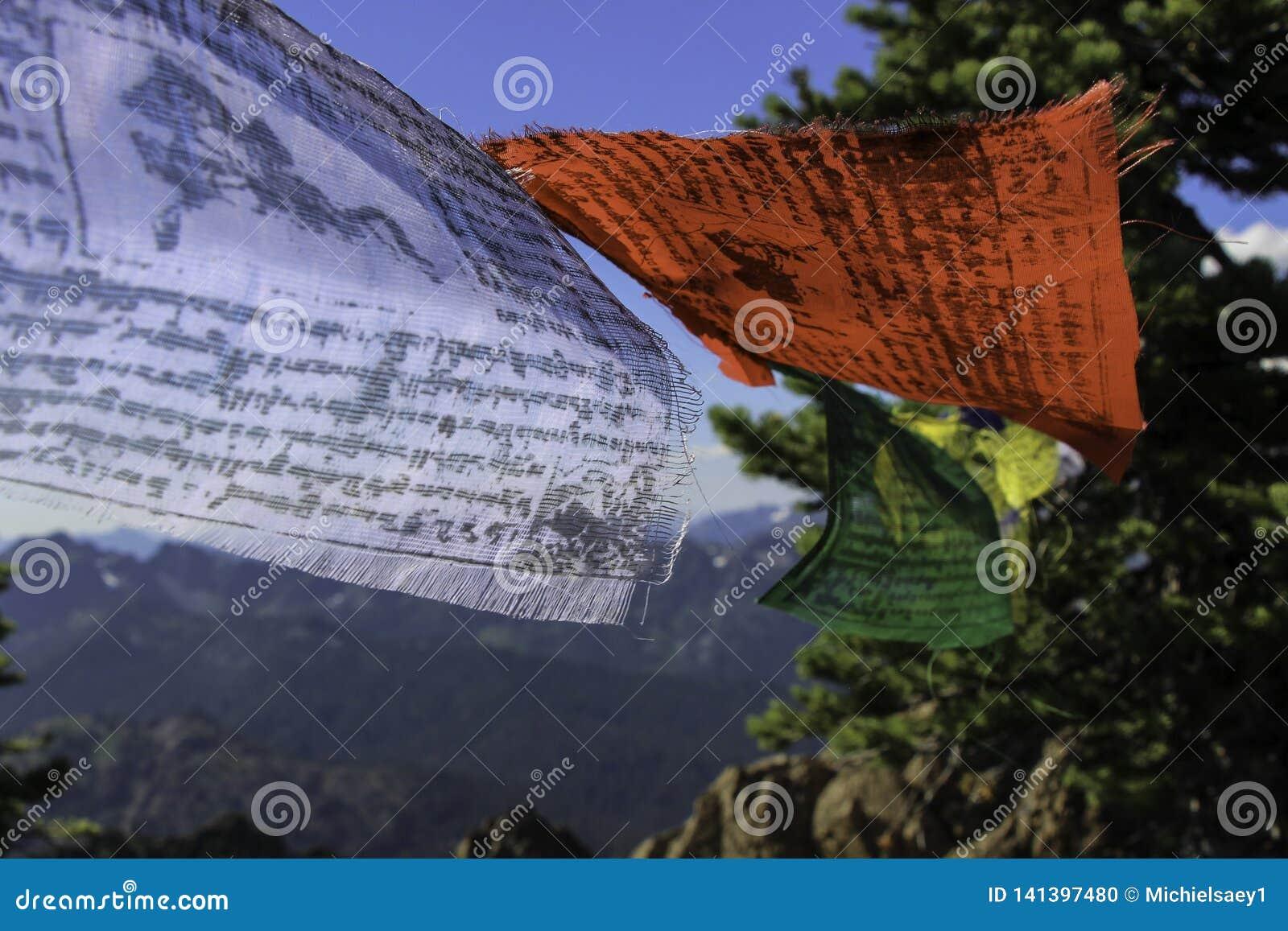 Bandiere tibetane sul vento di Collor della carta da parati della montagna