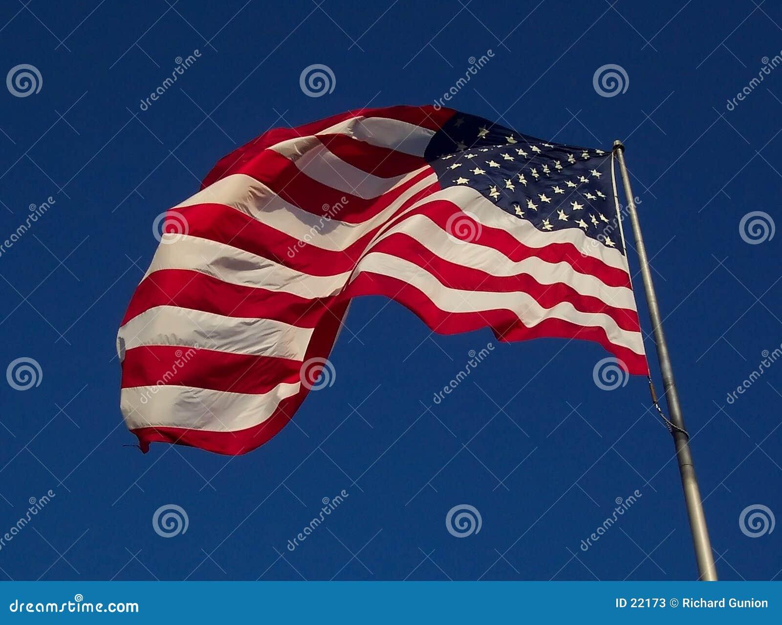Bandierina degli S.U.A. - giorno ventoso