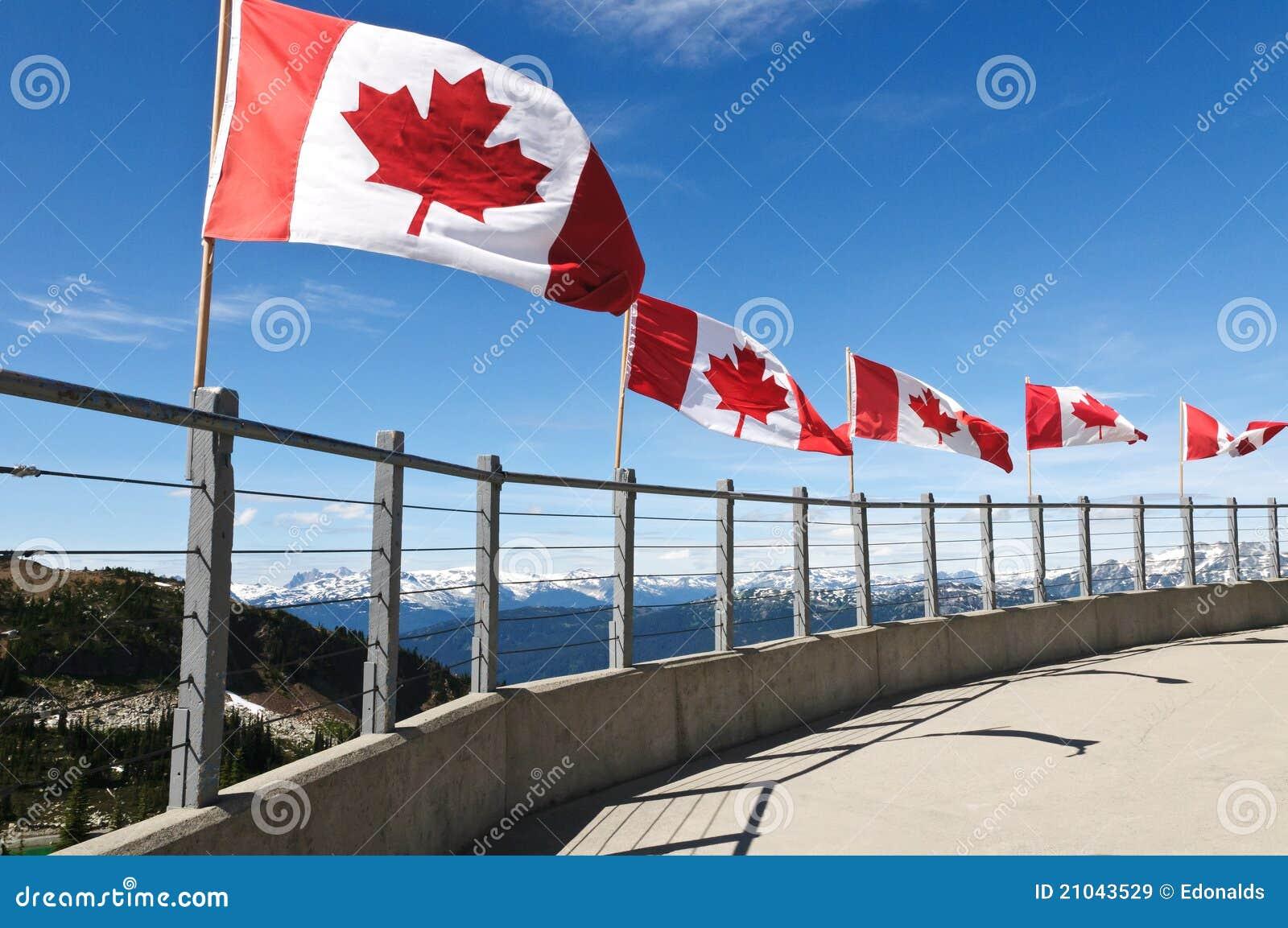 Bandierine canadesi