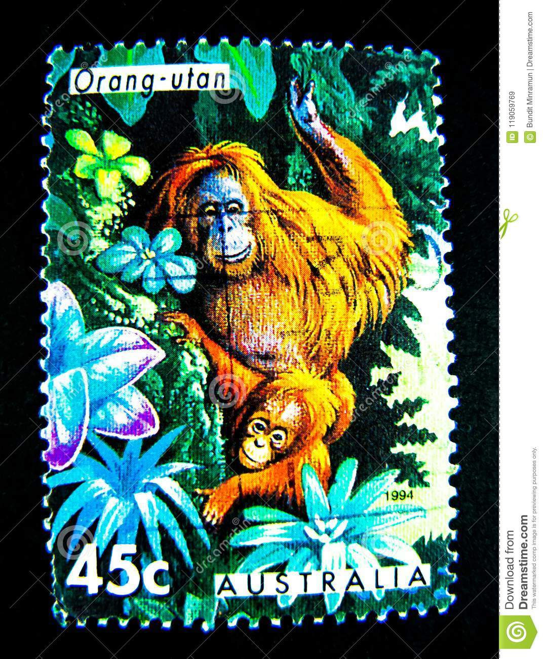 A Stamp Printed In Australia Shows An Image Of Orang Utan On Value At 45 Cent
