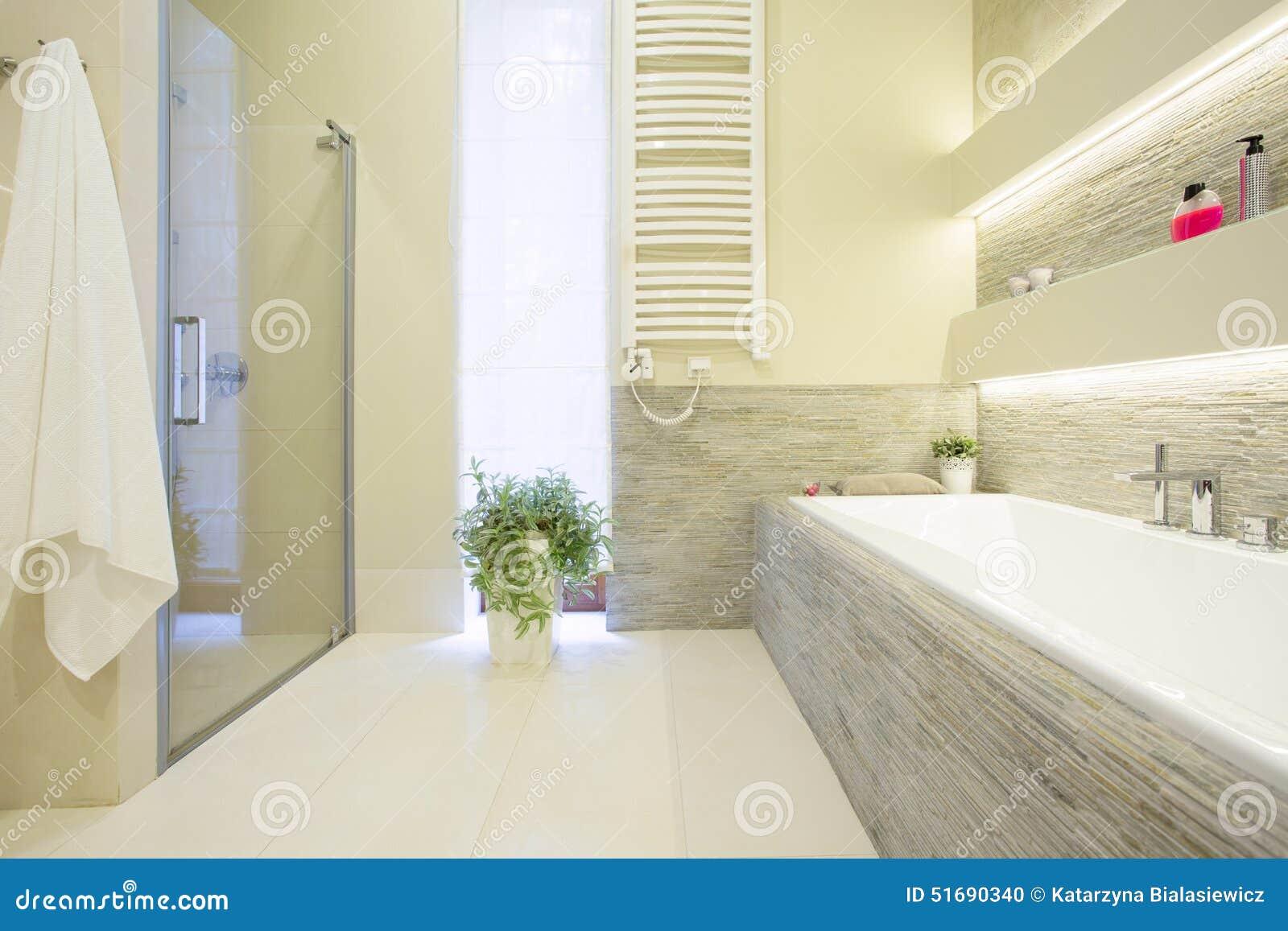 Banheira E Chuveiro Foto de Stock  Imagem 51690340 -> Banheiro Com Chuveiro Na Banheira