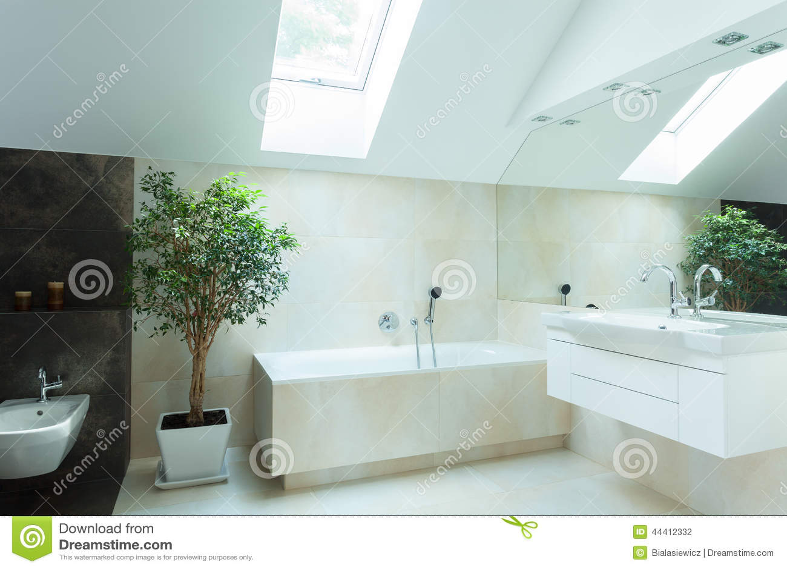 Banheiro Espaçoso Em Cores Neutras Foto de Stock Imagem: 44412332 #7EA229 1300 957