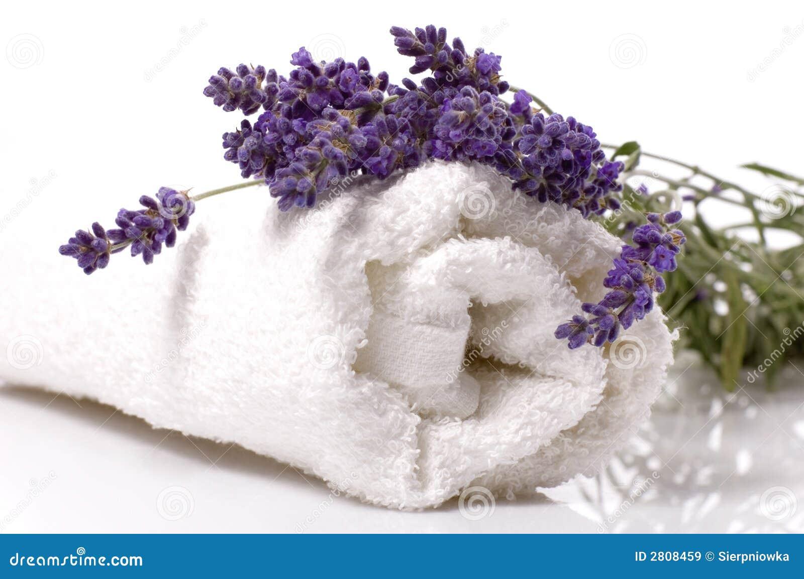 Banho da alfazema