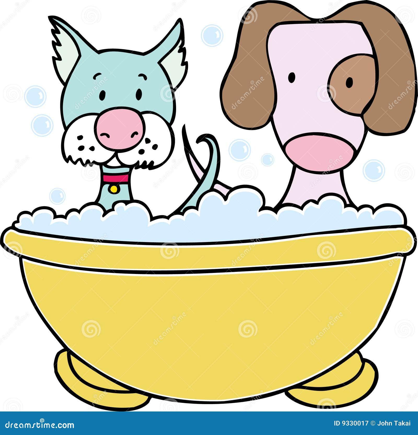 Banho do cão e do gato
