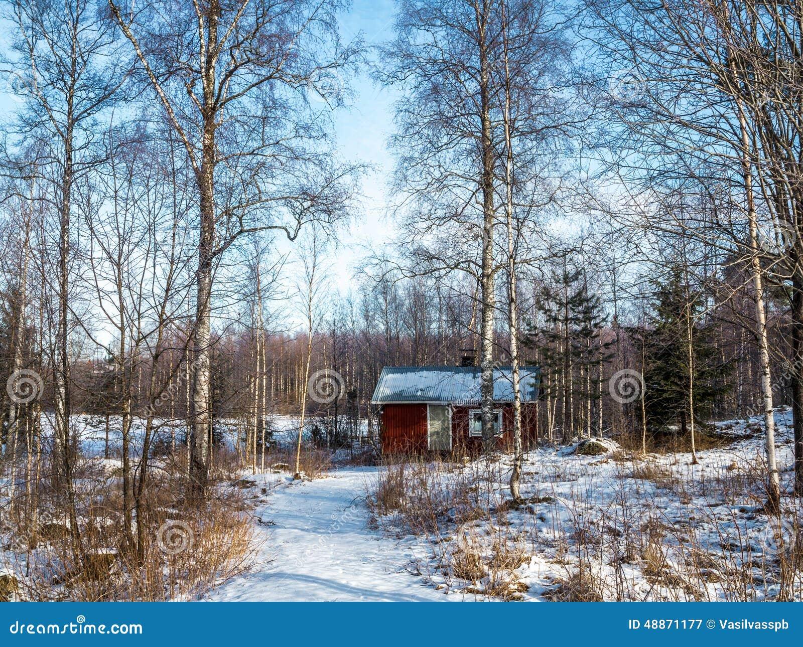 Banho em uma madeira do inverno
