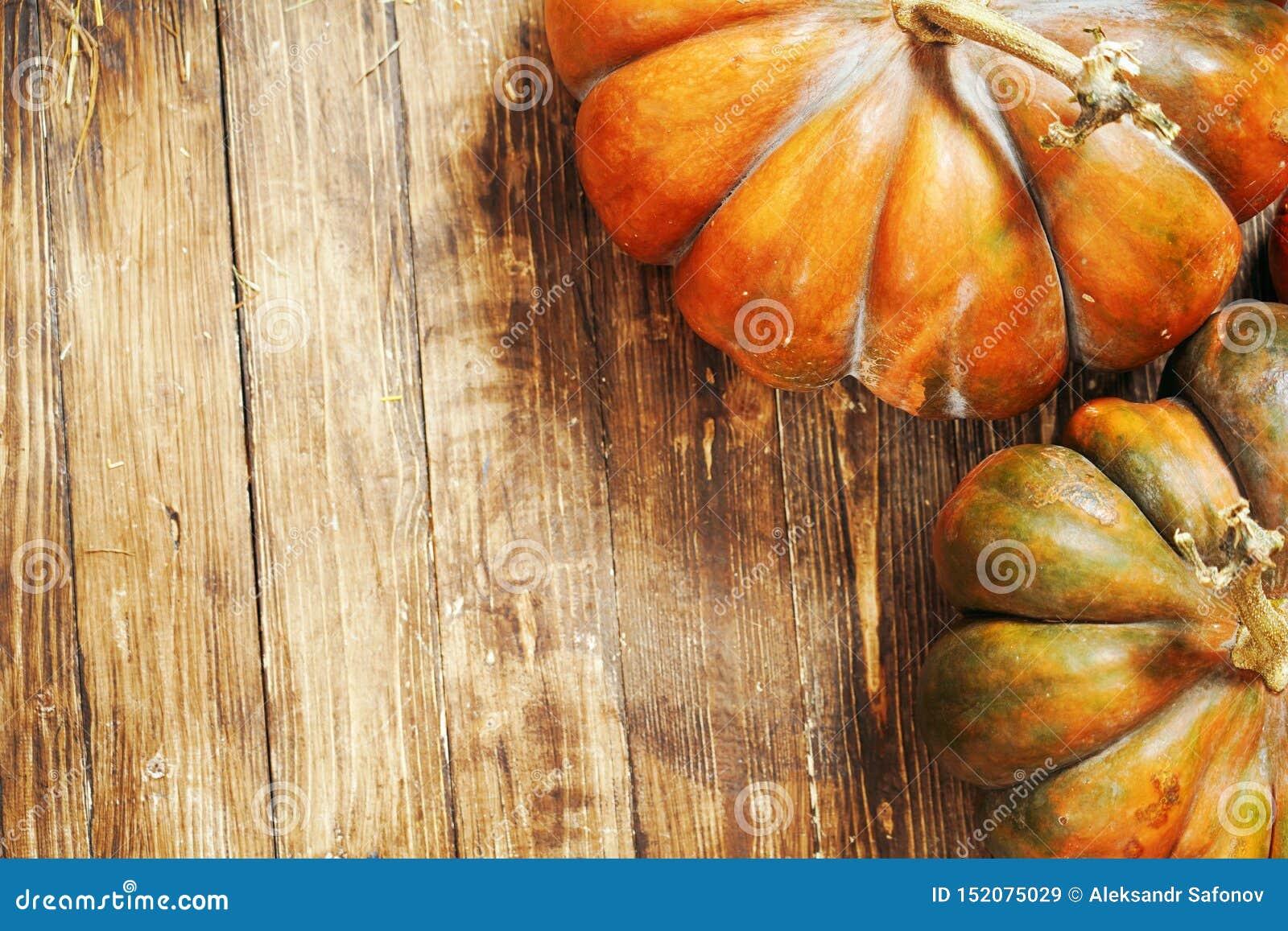 Bania na drewnianym tle jesieni wciąż życie bania na brąz drewnianej podłodze bania w górę strzału od odgórnego punktu