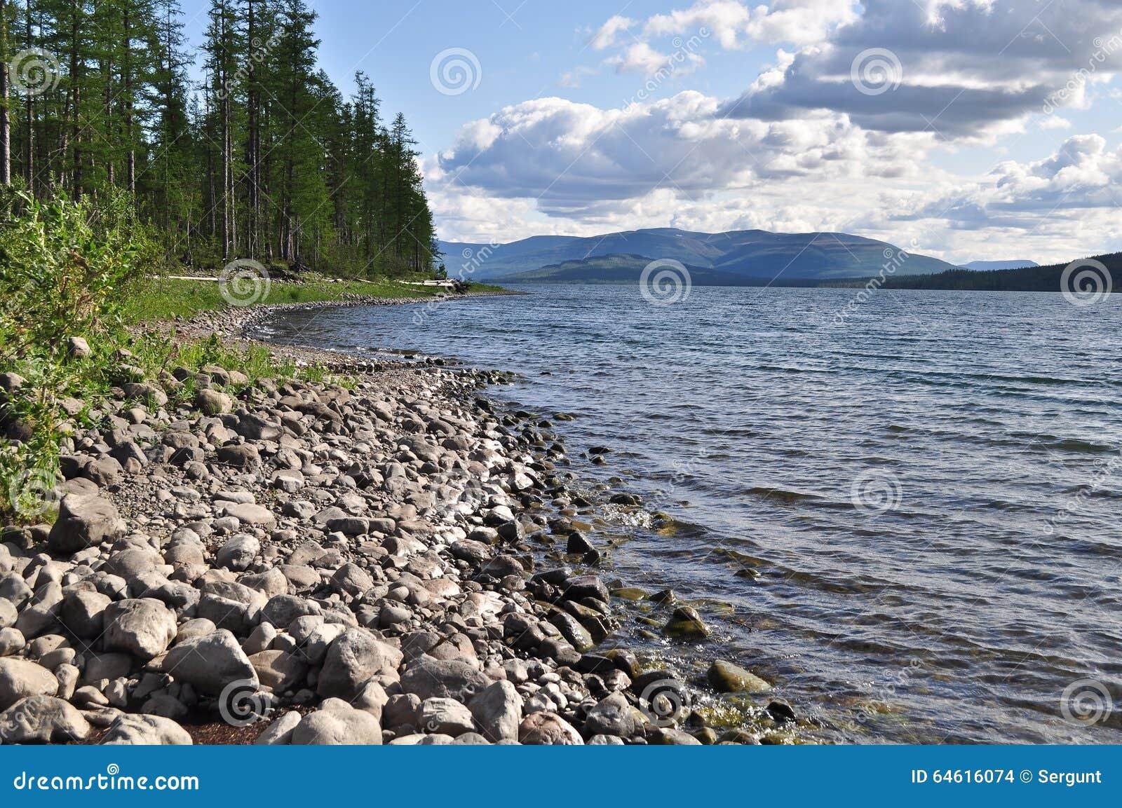 Bank av sjöarna på den Putorana platån