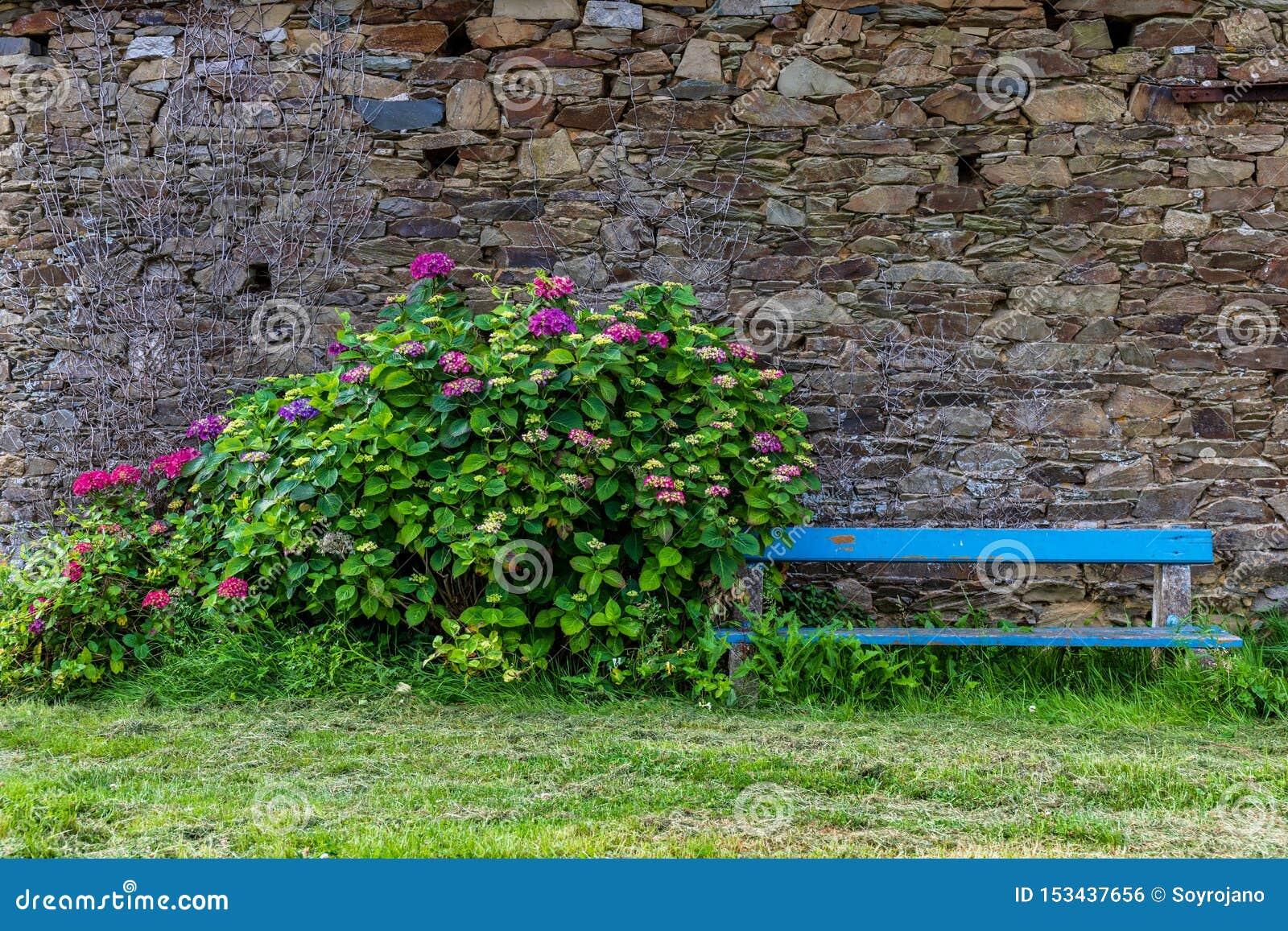 Bank mit Blumen mit Steinwandhintergrund