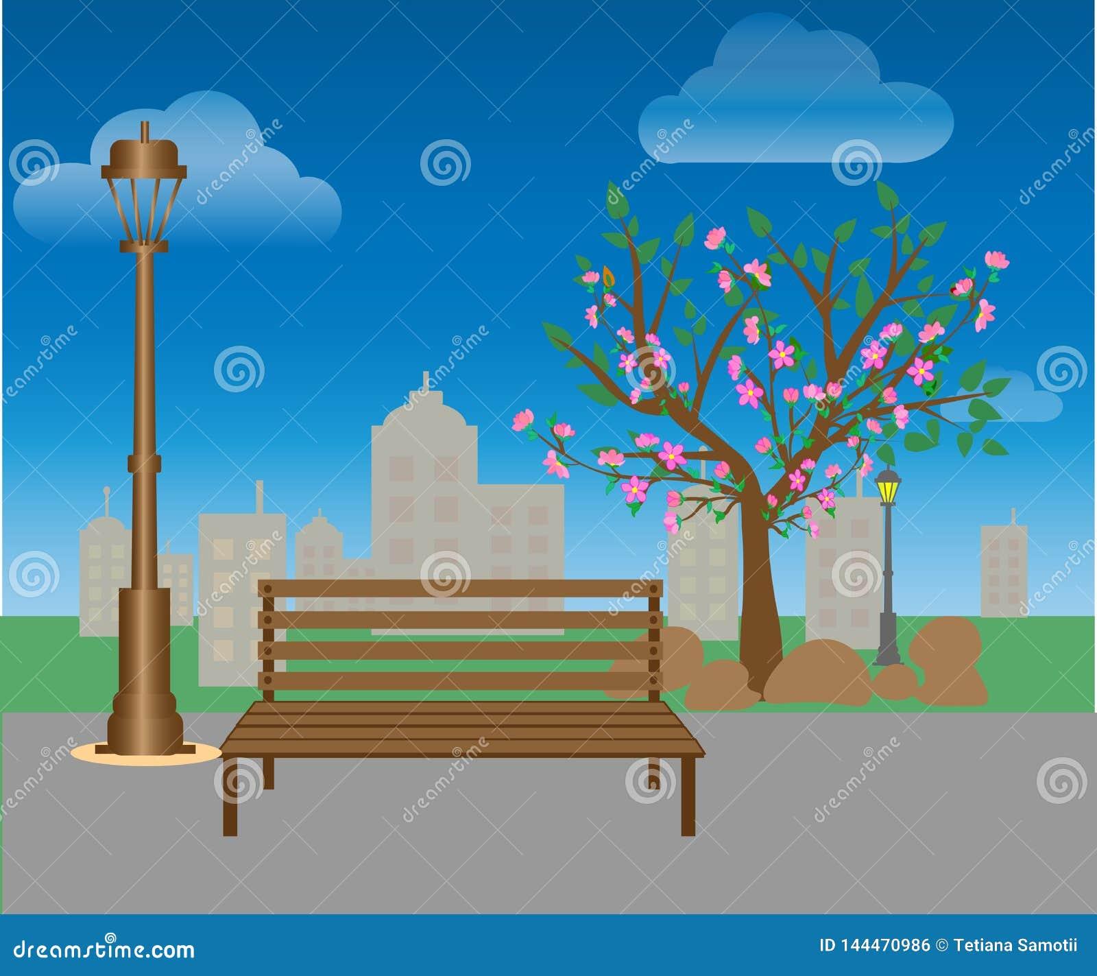 Banken en lantaarns in het stadspark Landschap: parkweg, groen gazon, bomen, struiken, stad op de horizon