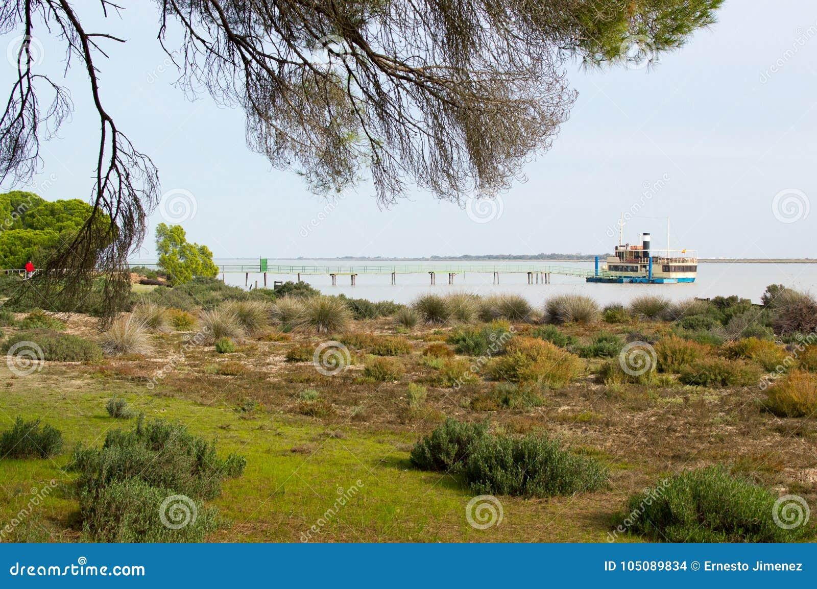 Banken van de Guadalquivir in het Nationale Park van Doñana