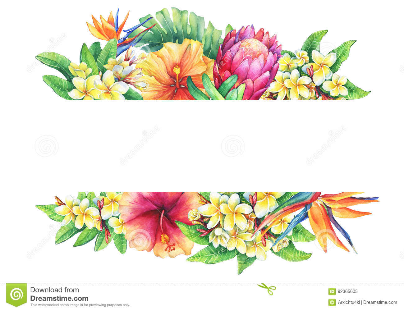 Banner With Branches Purple Protea Plumeria Strelitzia And Hibiscus Tropical Flowers