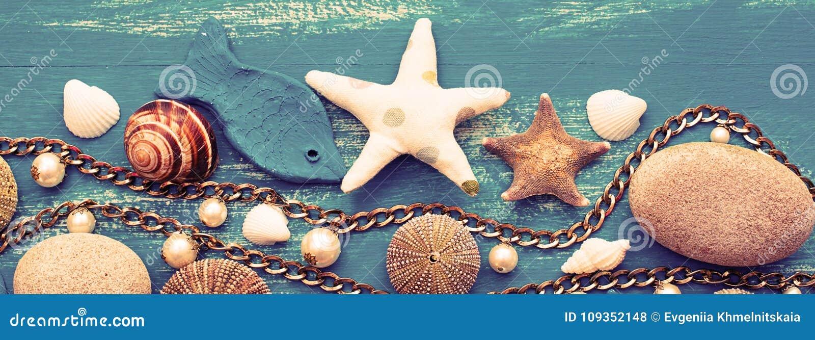 Banner Decorative arrangement of sea shells and stones