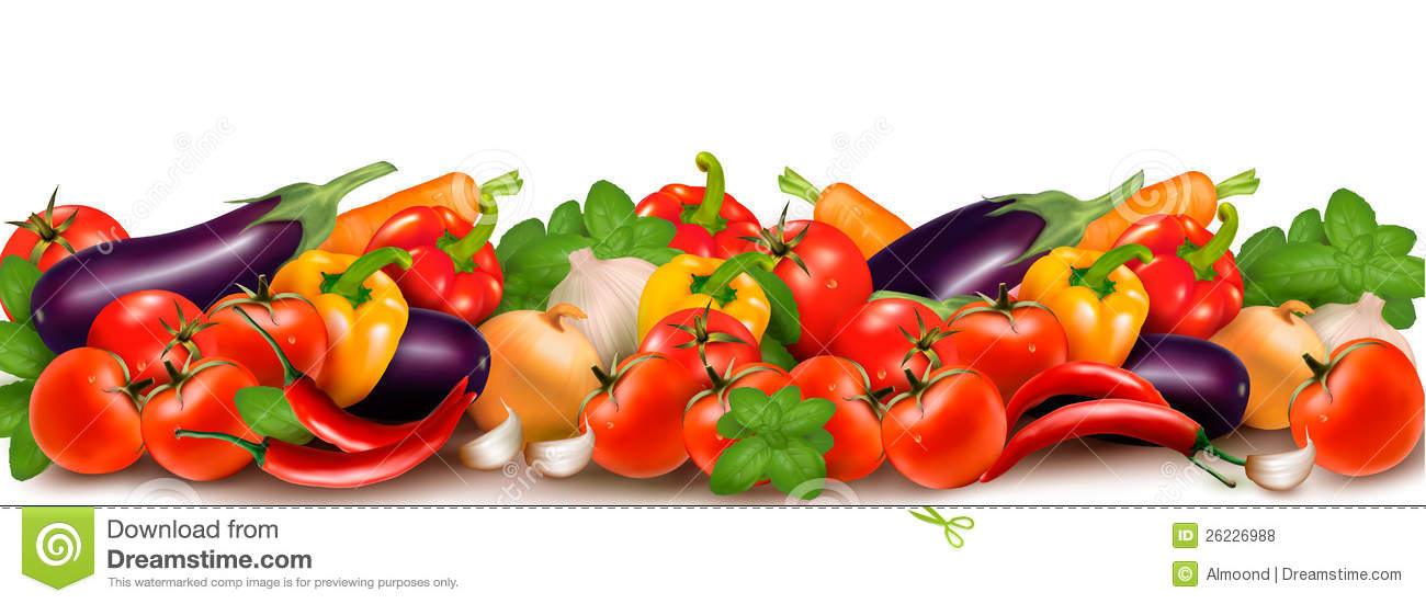 Banner Made Of Fresh Colorful Vegetables Stock Vector ...