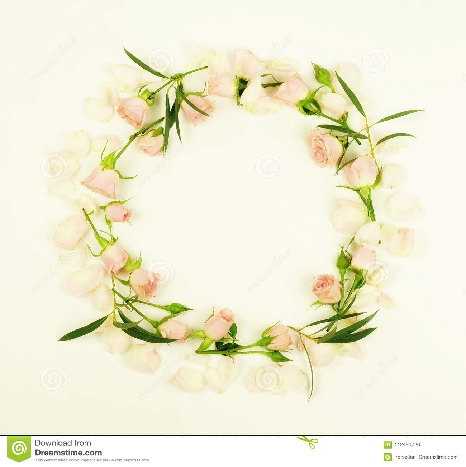 Banner tła kwiaty form różowego spiralę trochę Wianek rama robić różowi róża kwiaty