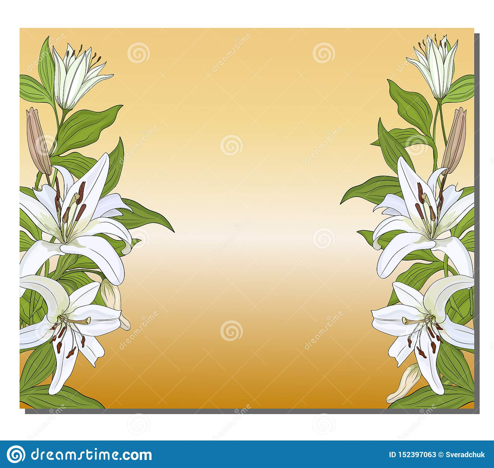 Banner with a vertical border of white lilies on a gold background. Vector