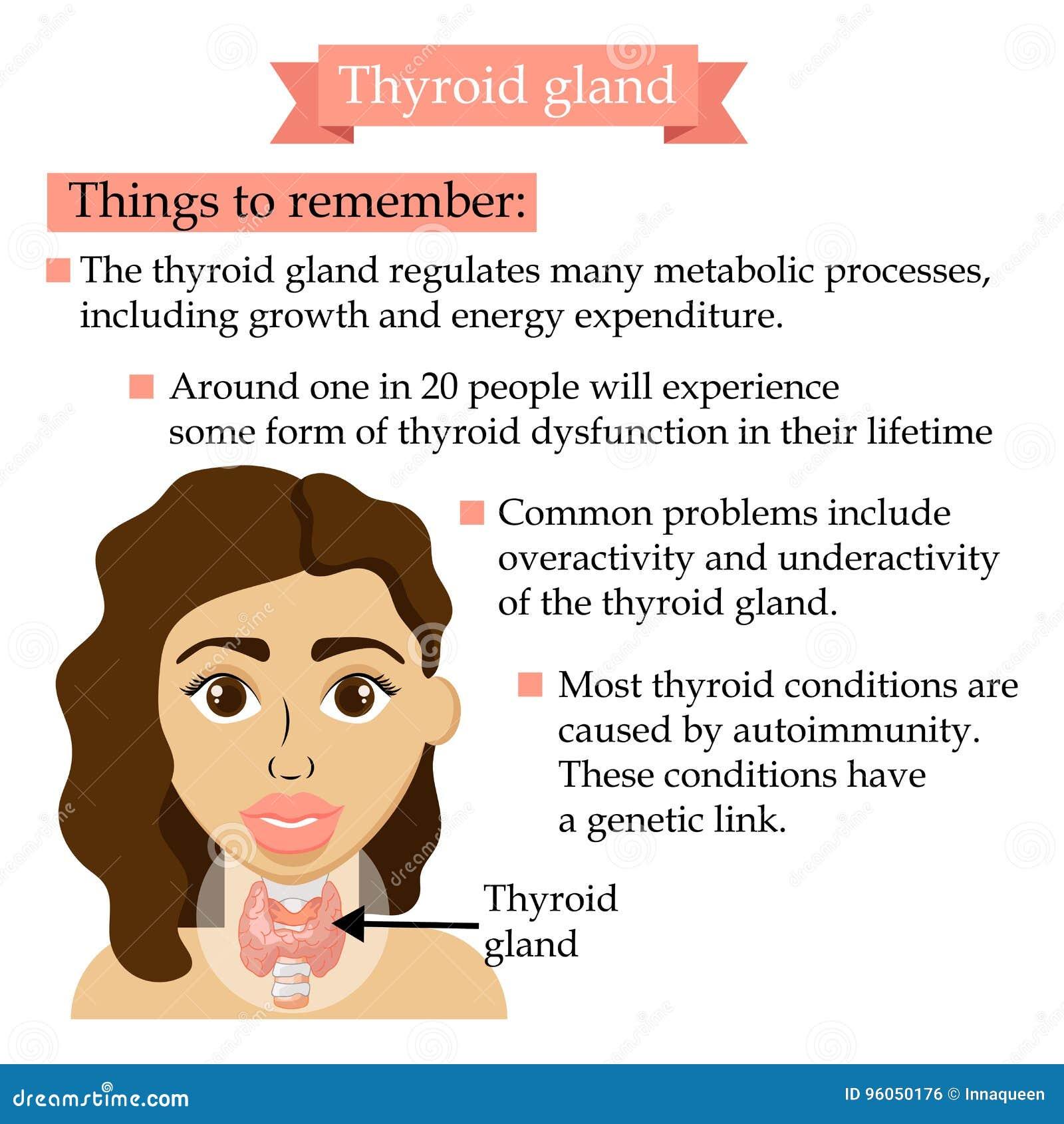 Bannière de soins de santé avec la femme Concept médical de la glande thyroïde