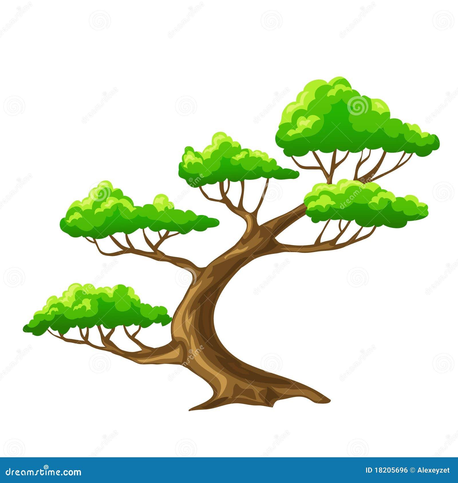 Bansai d 39 arbre de dessin anim avec le fond blanc image - Dessins d arbre ...