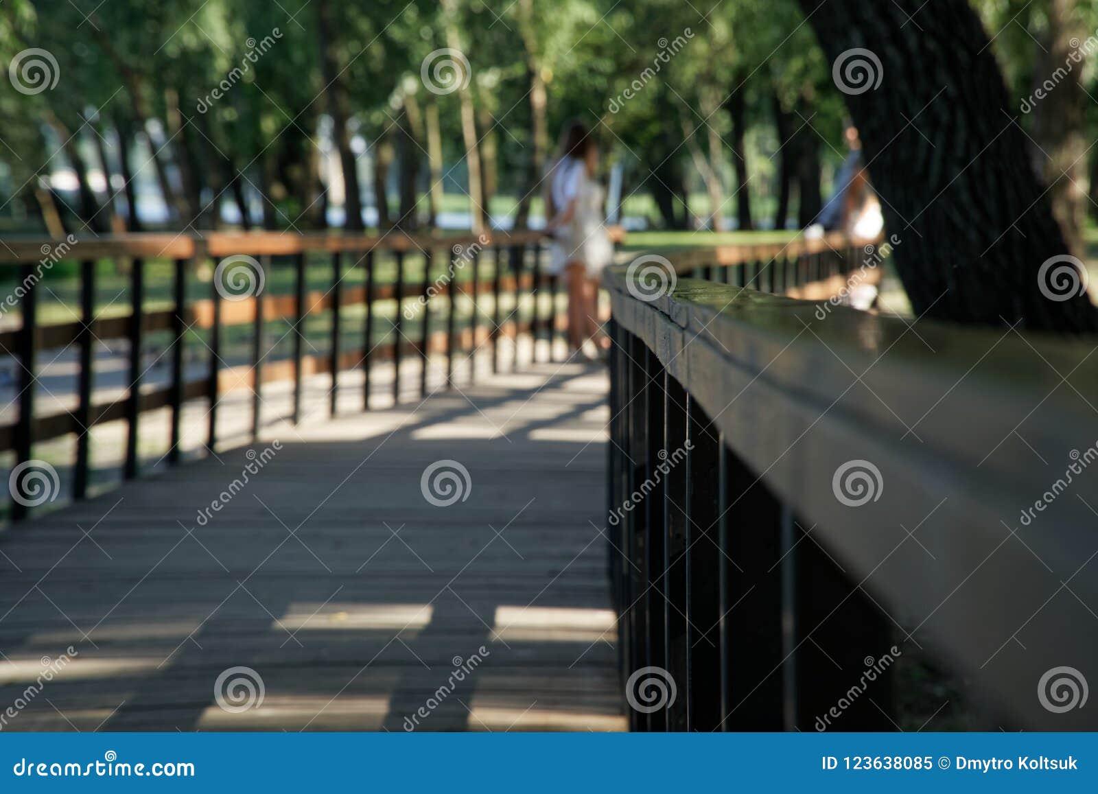 Barandilla de madera en parque público con el banco del césped y árbol verde, lugar para la relajación