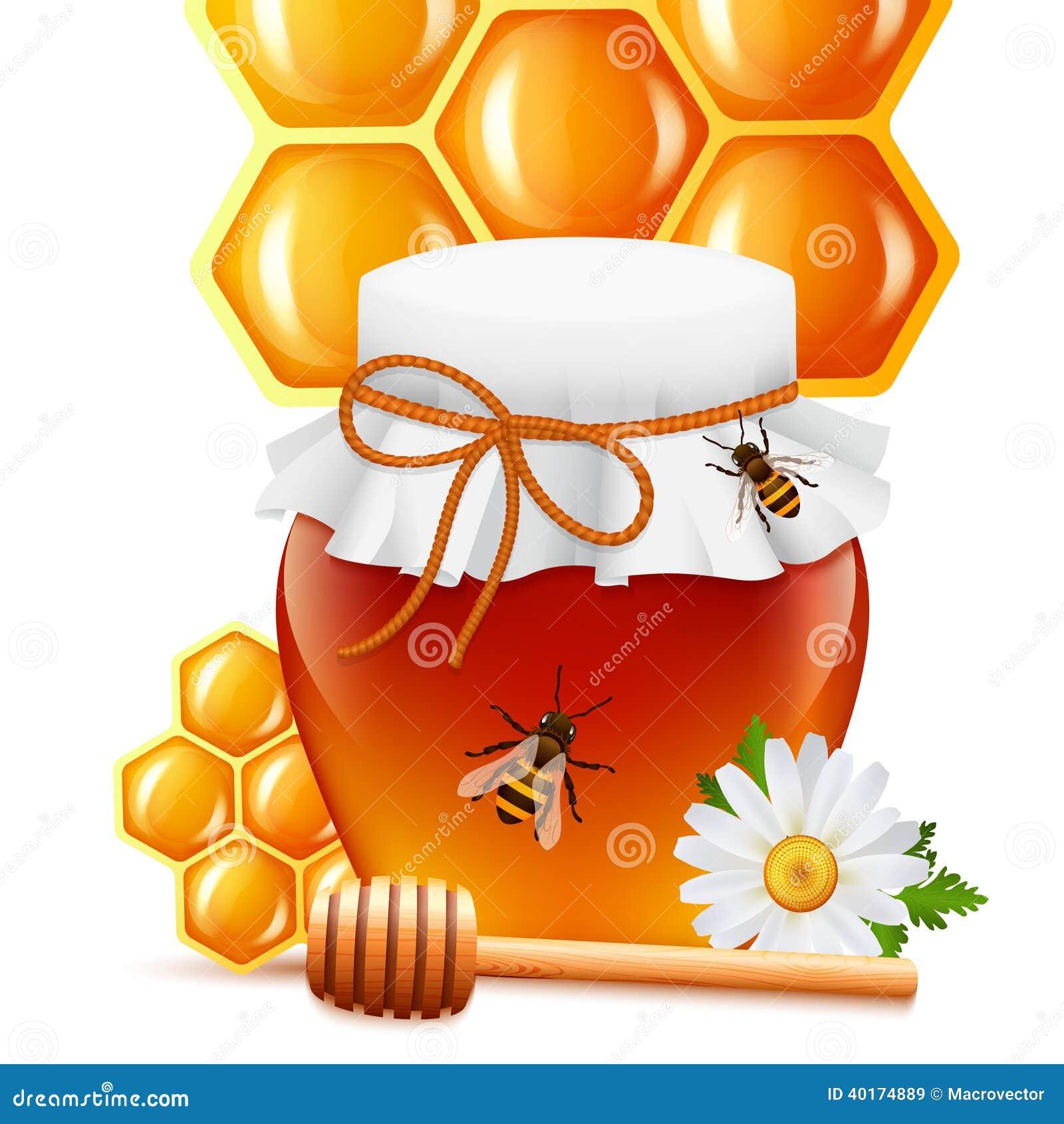 Barattolo del miele con la stampa del pettine e del merlo acquaiolo