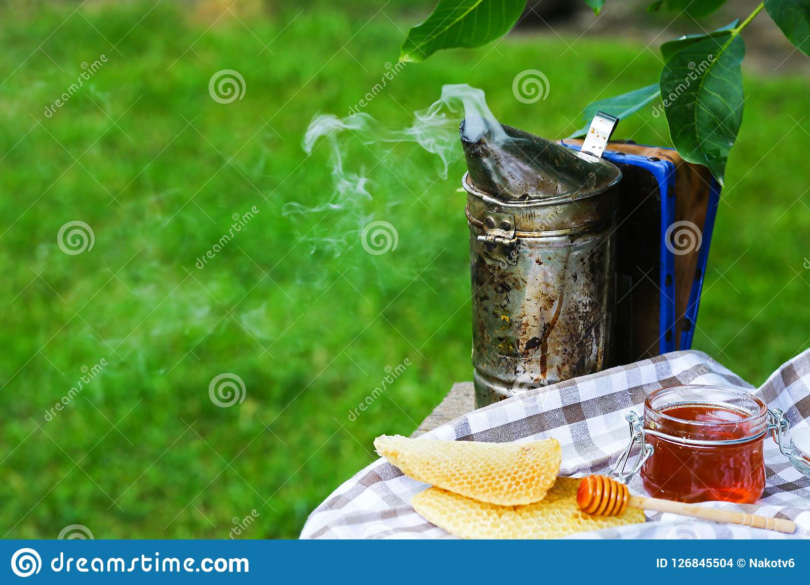 Barattolo di miele con il miele della sgocciolatura dal merlo acquaiolo apicoltore del camino all aperto Concetto di apicoltura I