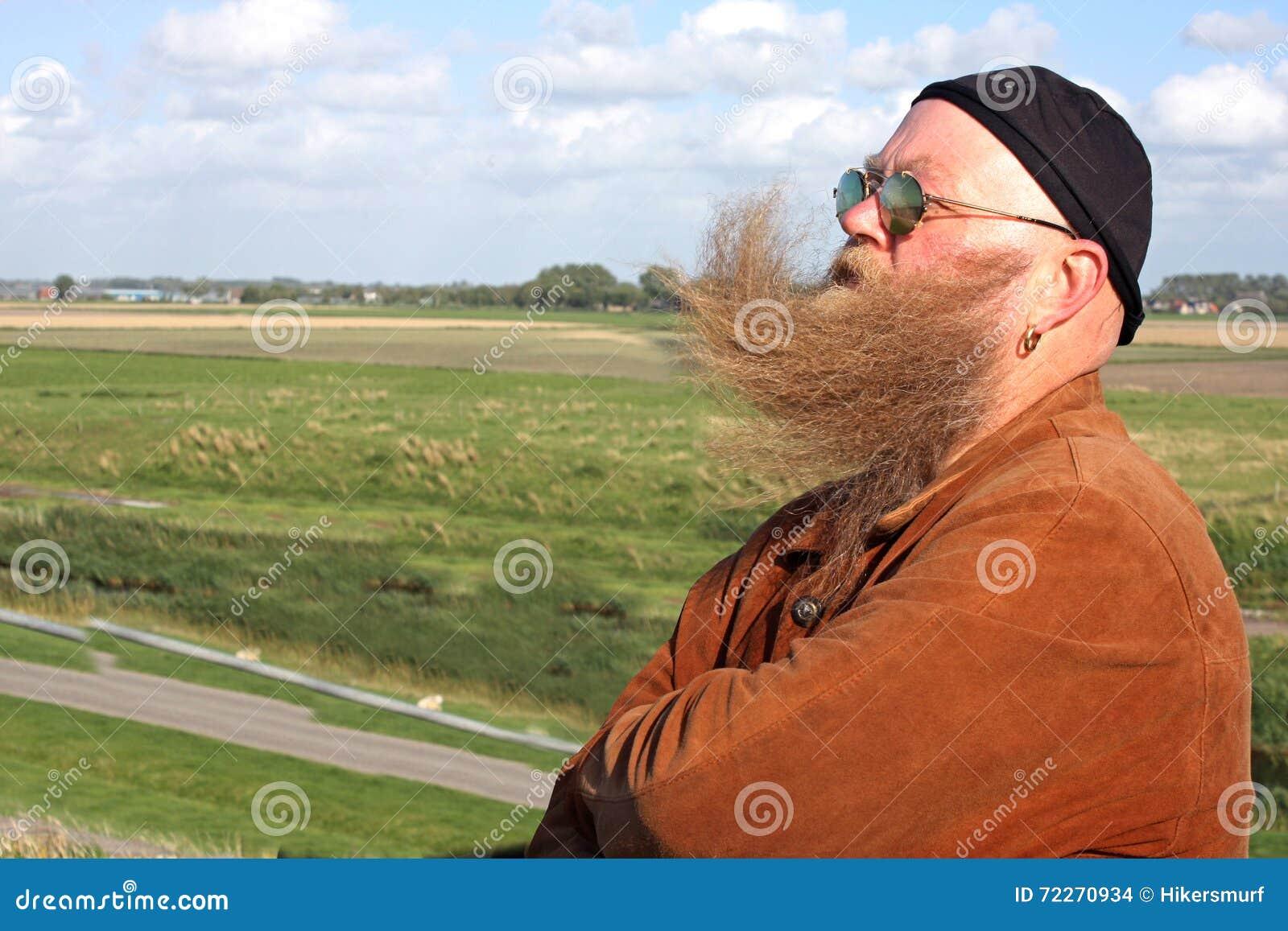 Barba del hombre del viento ido