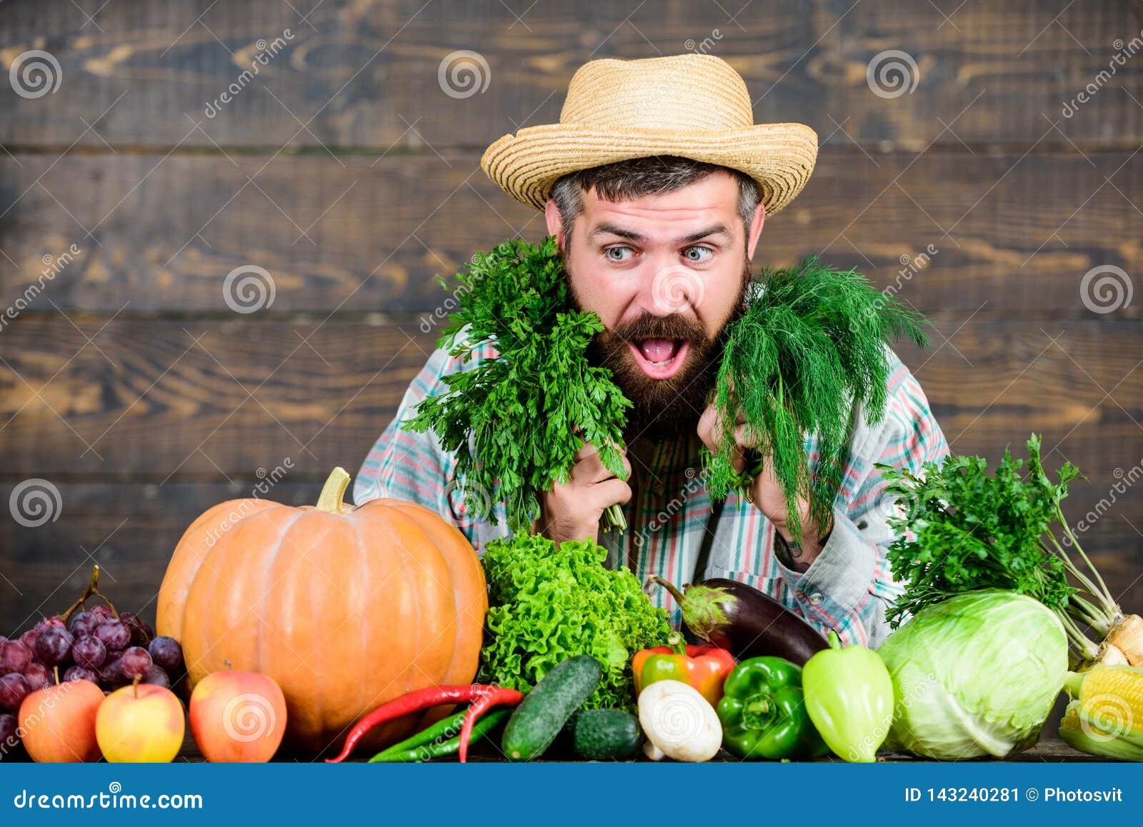 Barba sana enorme granjero maduro barbudo Festival de la cosecha cocinero del hombre con la cosecha rica del otoño Comida orgánic