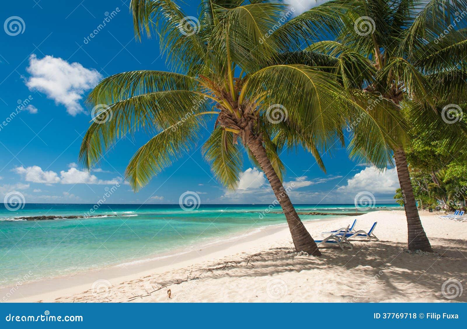 Tropical Island Beach Ambience Sound: Barbados Stock Photo. Image Of Barbados, Nature, Seascape