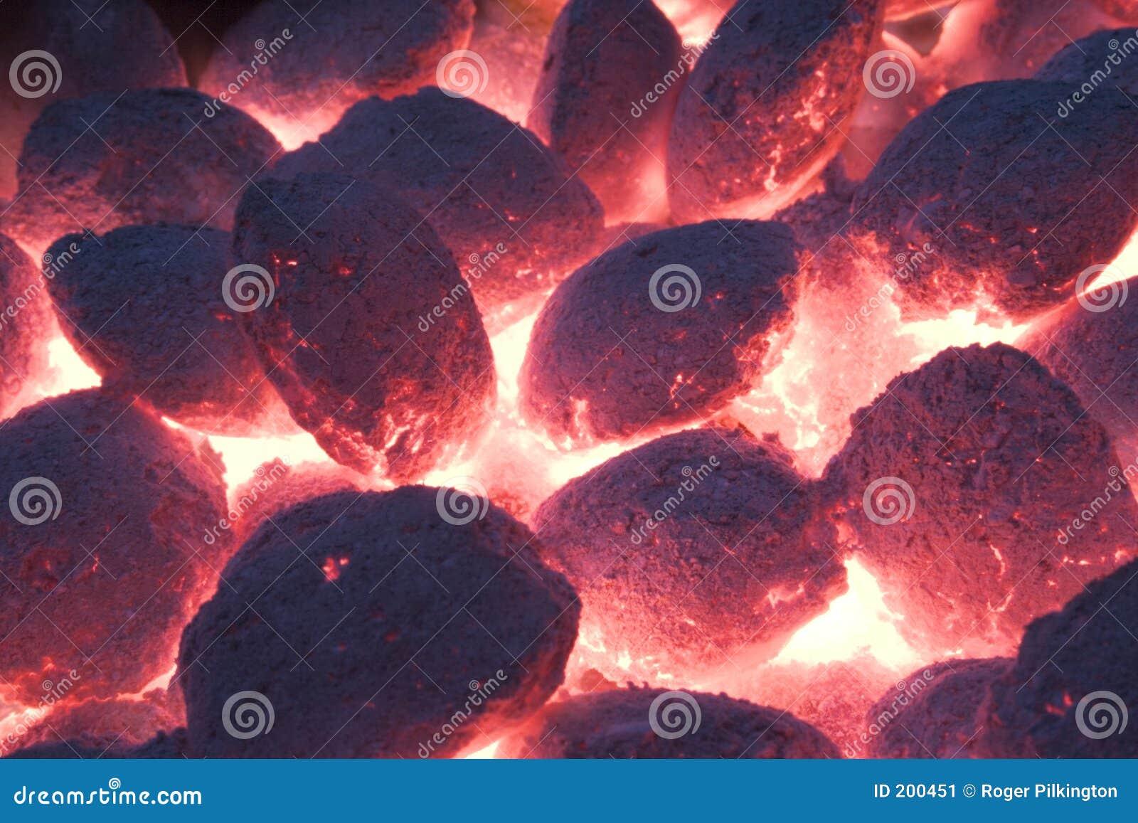 Barbecue 3