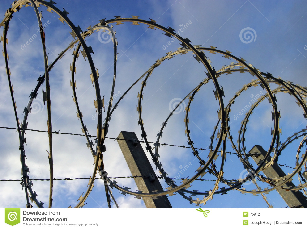 Barbed razor security wire