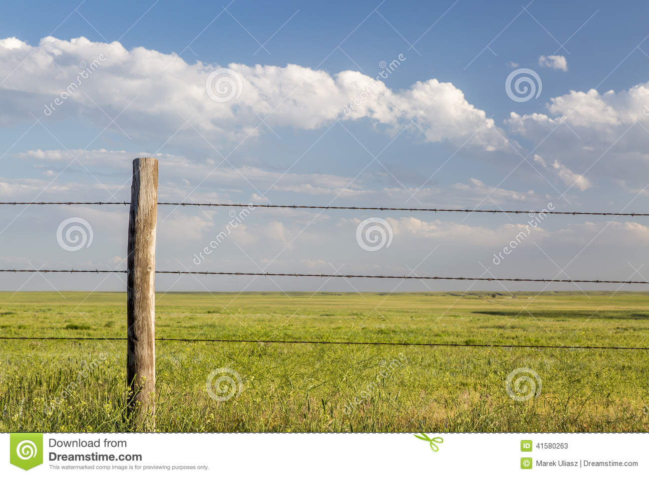 Barbed wire cattle fence stock image of