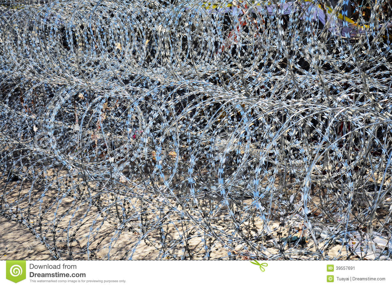 Magnificent Concertina Wire Injuries Picture Collection - Electrical ...
