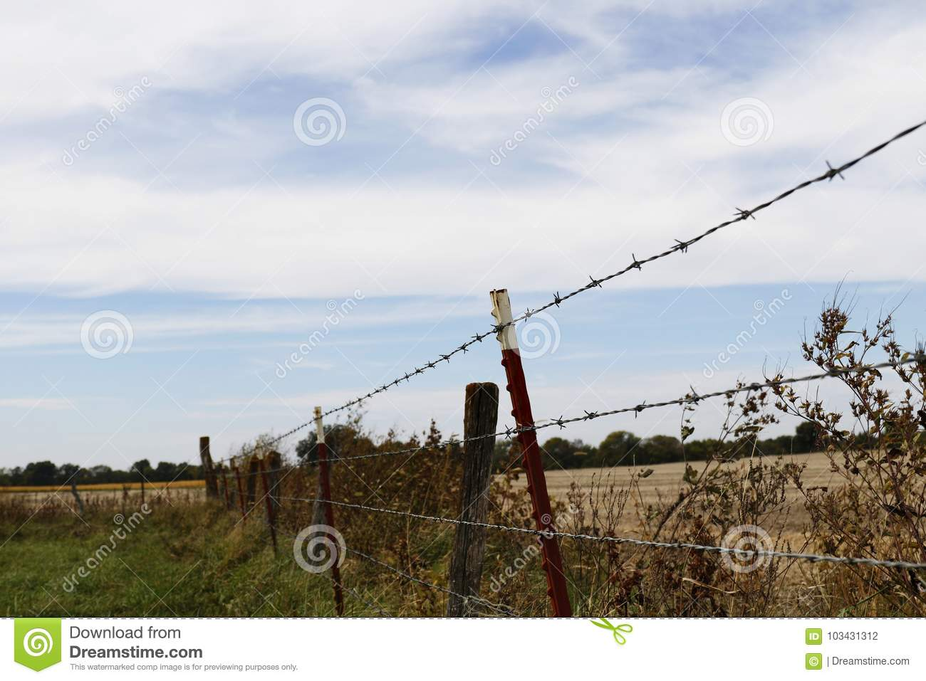 Barbed Wire Fence stock photo. Image of pasture, country - 103431312