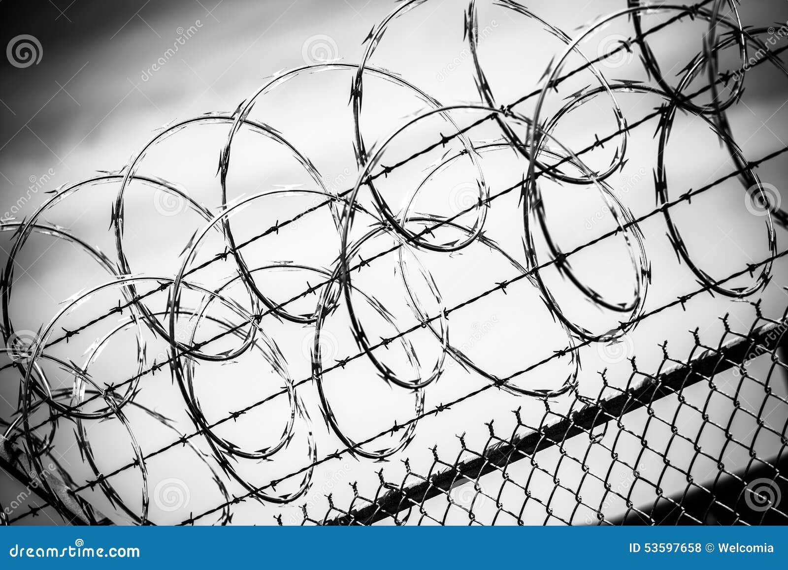Amazing Concertina Wire Fence Adornment - Wiring Standart ...