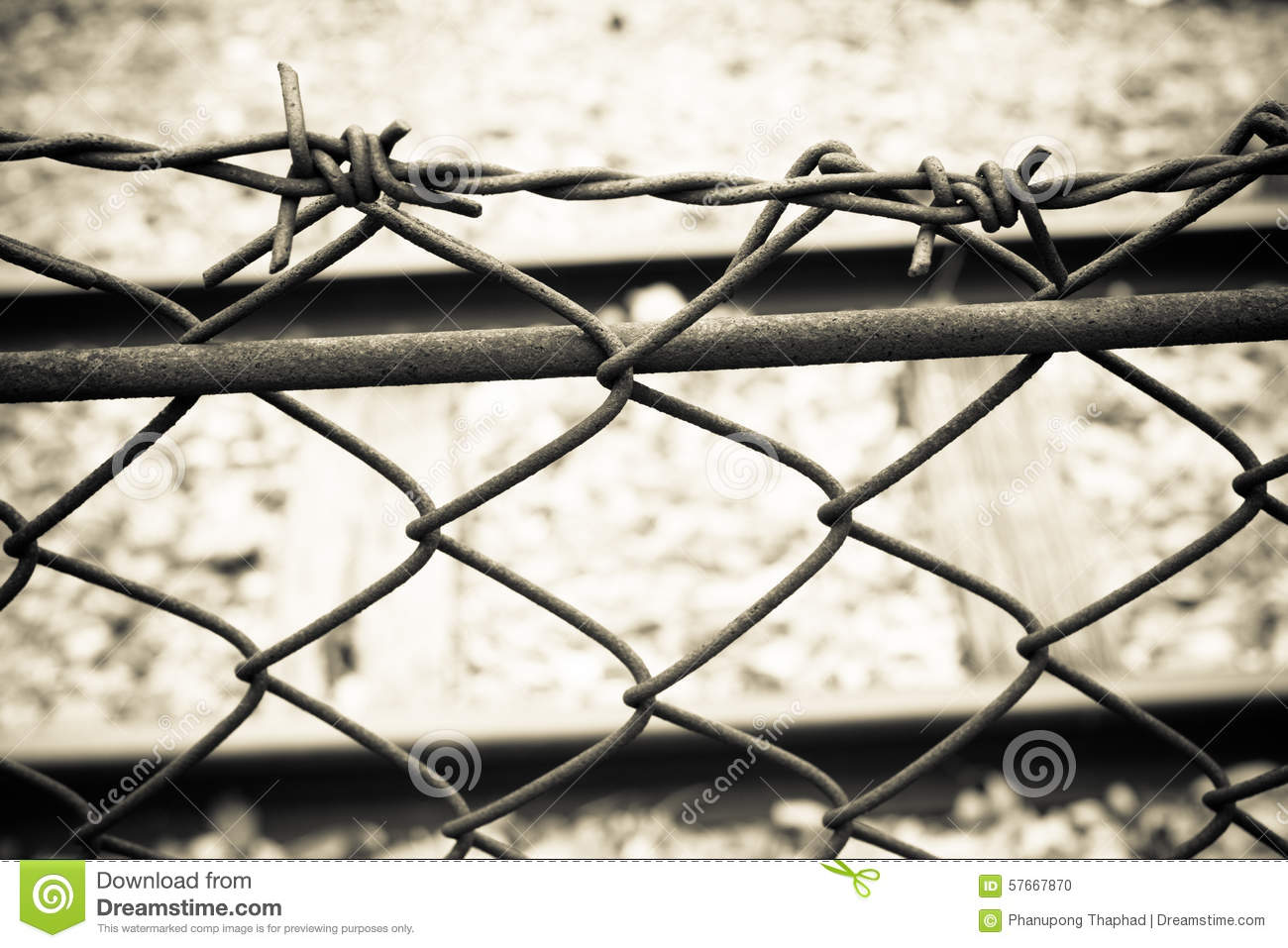 Barbed Wire Fence. Prison Fence In Black And White Closeup. Stock ...