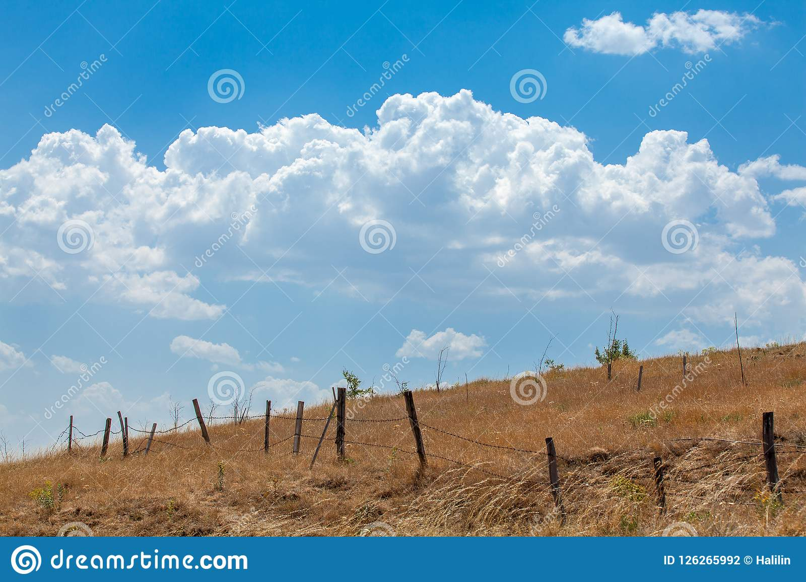 Barbed Wire Fenceline And Blue Sky Stock Photo - Image of breeze ...