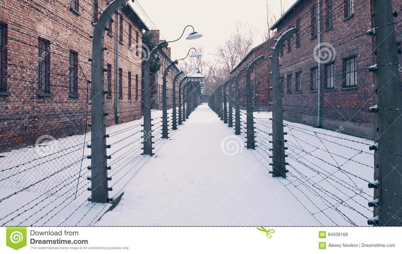 Between barbed wire fences. Auschwitz Birkenau, German Nazi concentration and extermination camp. Barracks in falling