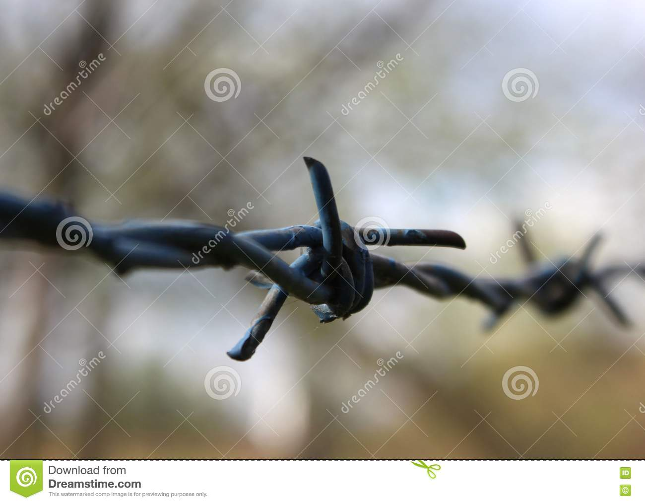 Barbed wire knot stock image. Image of wire, rusted, close - 79541523