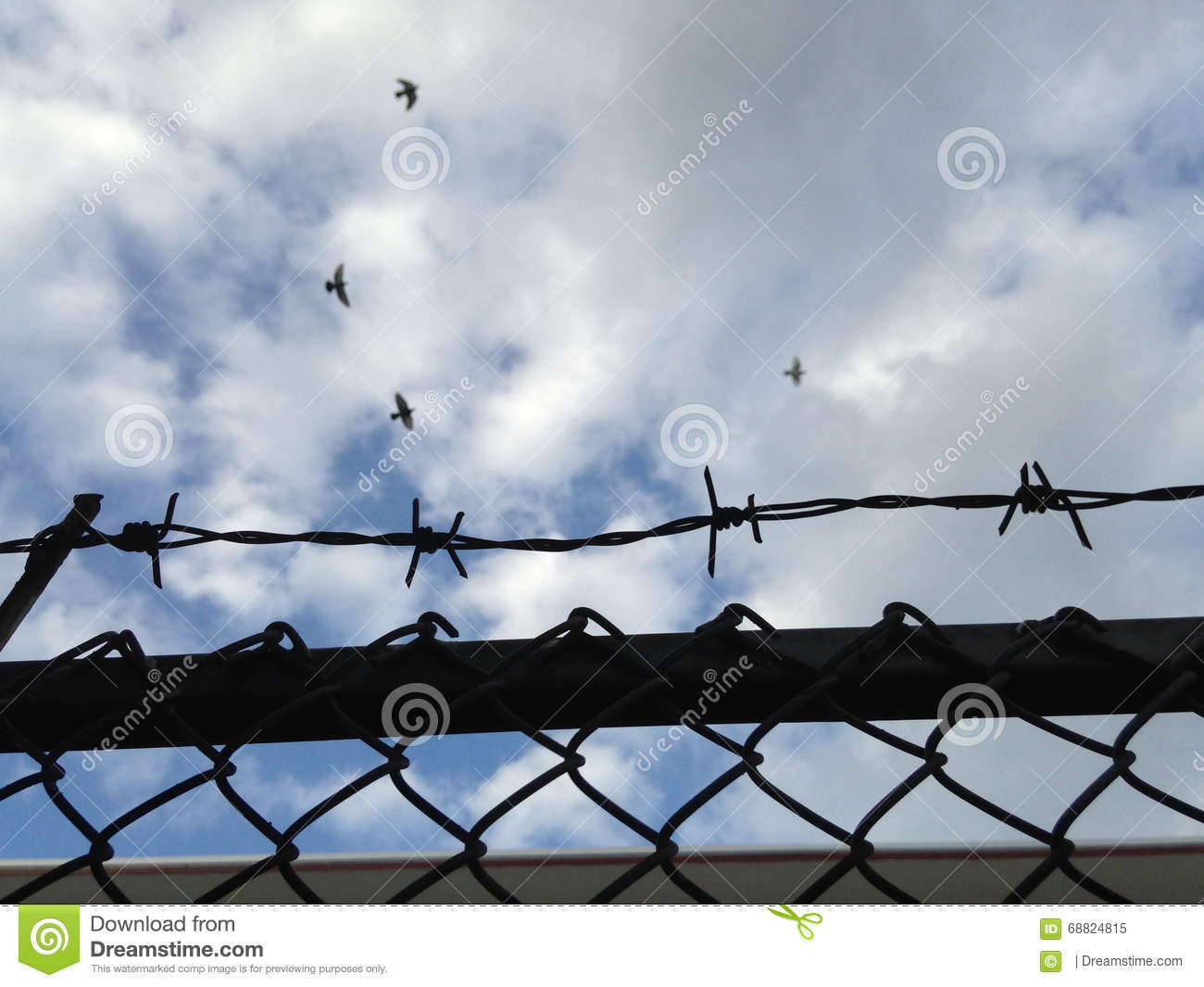 Barbed Wire Mesh Fence Against Blue Sky (selective Focus Of Wire ...