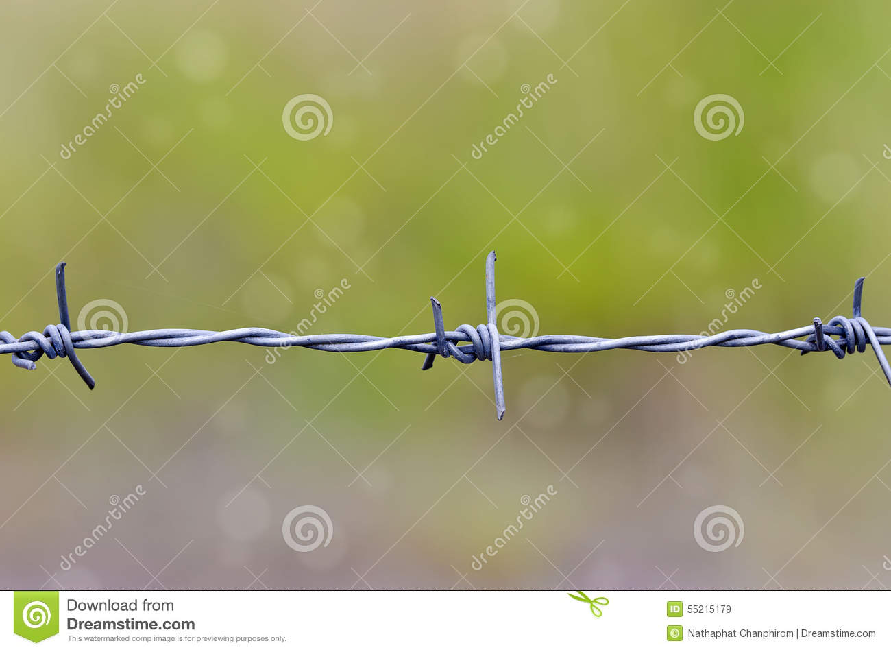 Barbed wire stock photo image