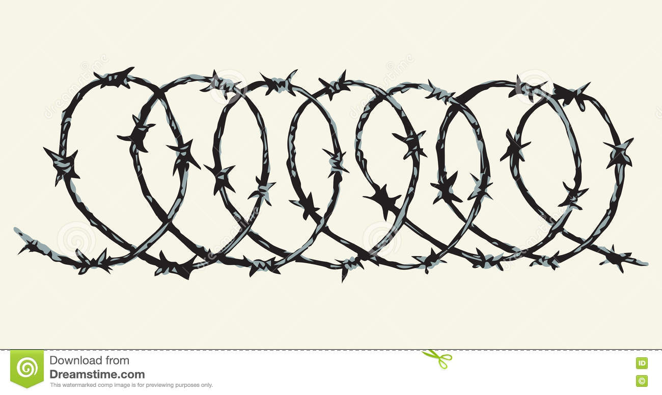 Barbed Wire. Vector Drawing Stock Vector - Illustration of prison ...