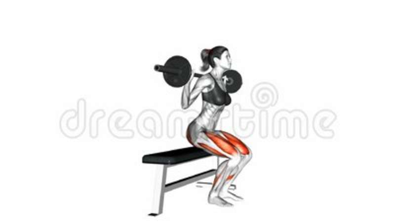 Marvelous Barbell Bench Squat Exercise Gmtry Best Dining Table And Chair Ideas Images Gmtryco