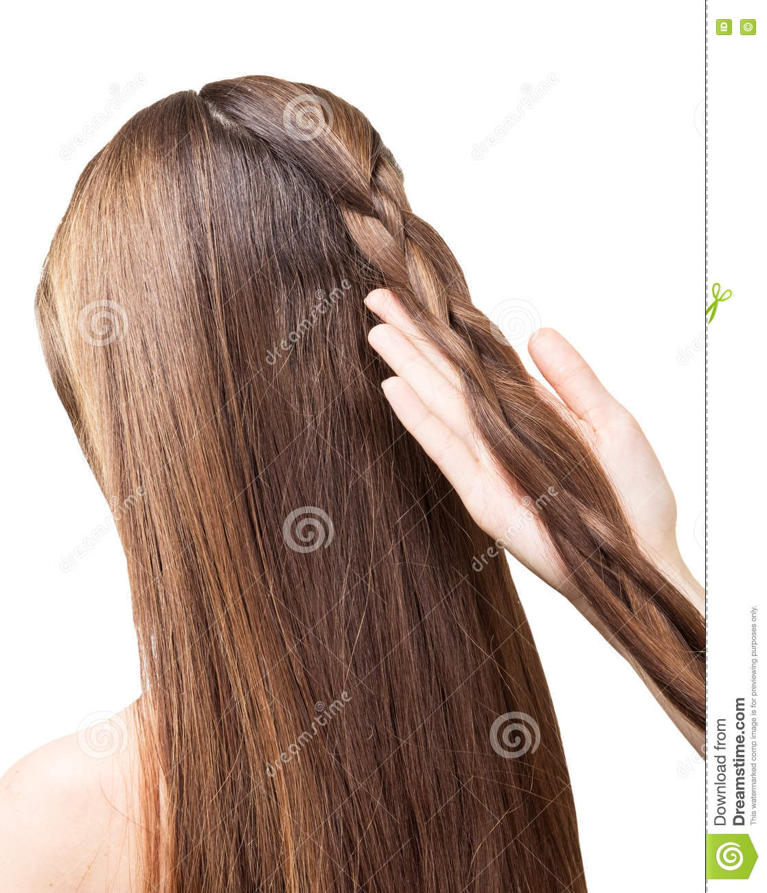 Barber girl braids the long hair in braid isolated.