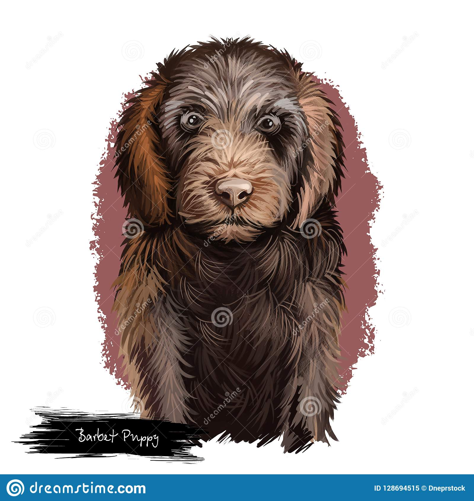 Barbet Puppy Dog Breed Digital Art Illustration Isolated On White