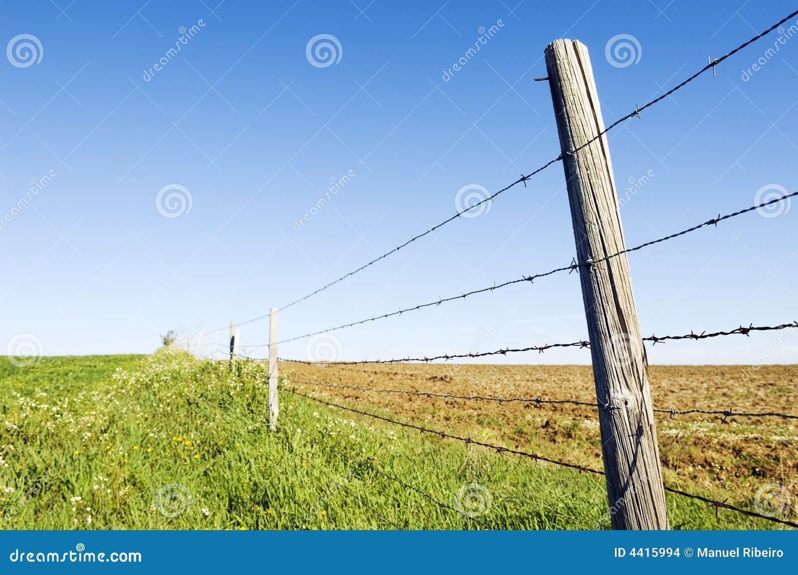 Barbwire fence stock photo. Image of farm, horizon ...