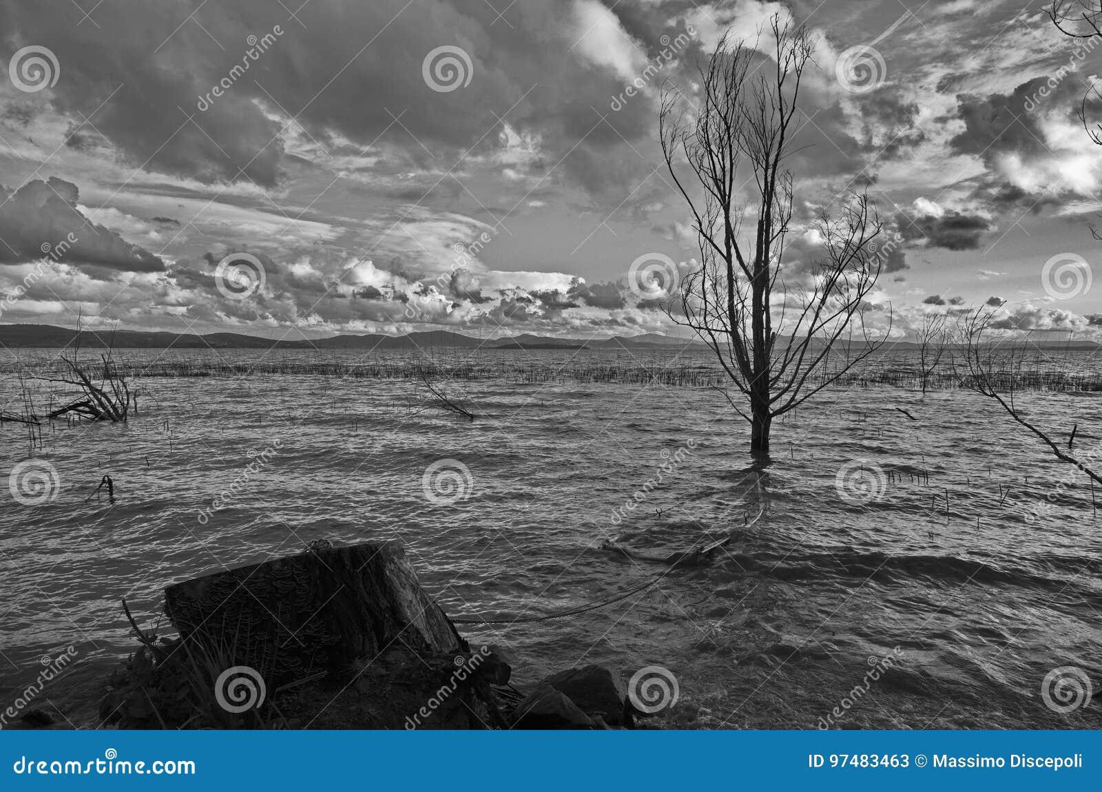 Barca ed albero d affondamento
