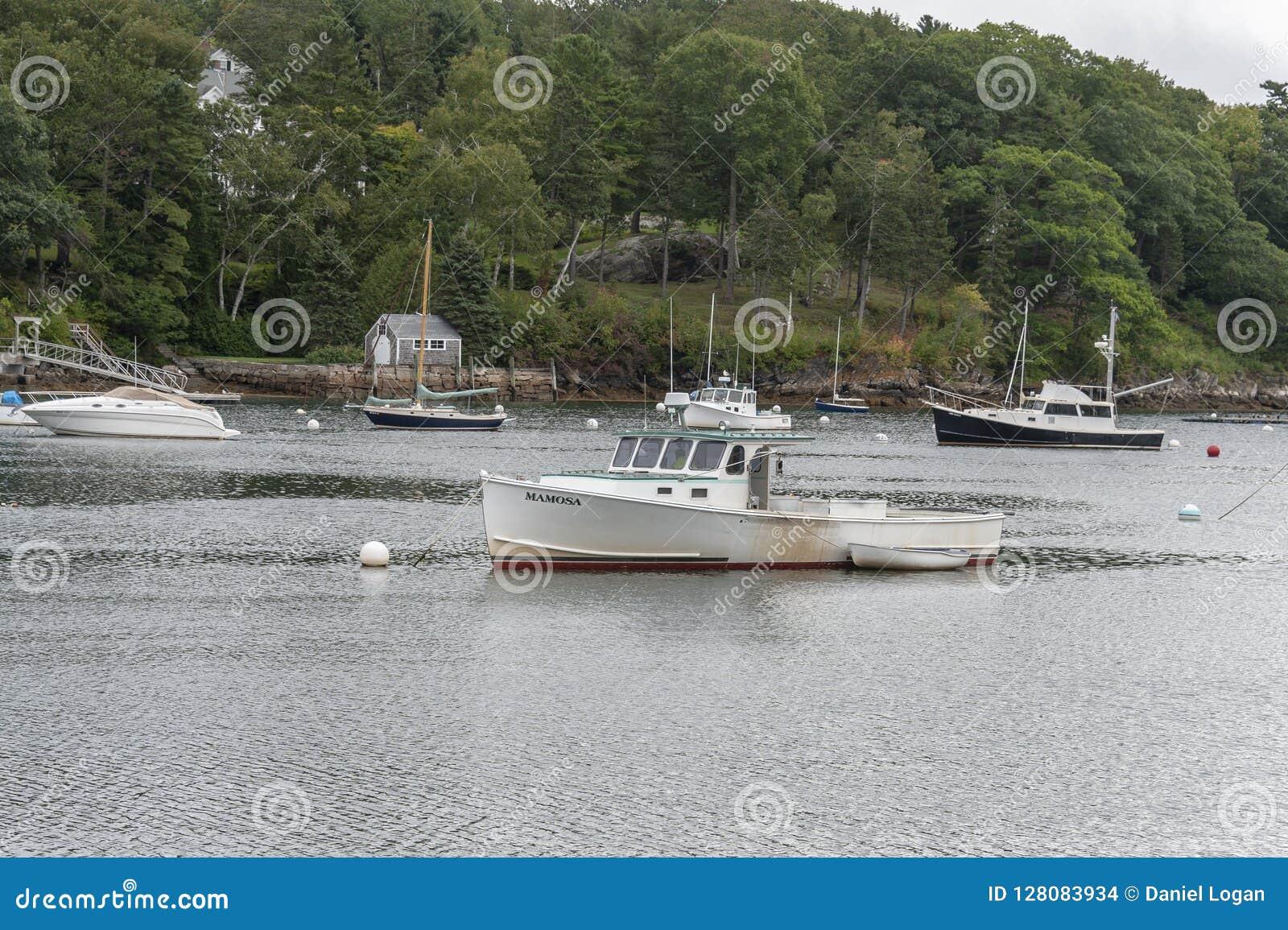 Barca Mamosa dell aragosta e schifo