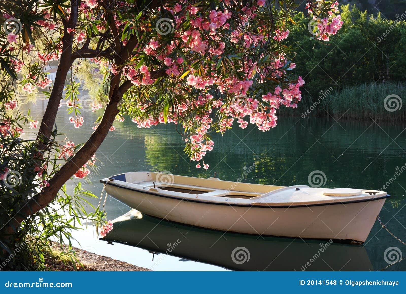 Barca sul fiume