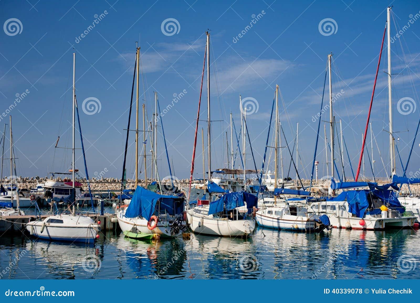 Barche a vela